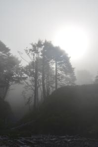 The morning fog on an Oregon beach
