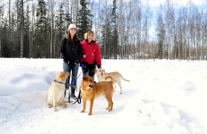 Joe, Leslie and Lindsay take the Hunter and the Labs out for a romp in the March snow