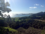 This is the quintessential picture of the Coromandel Peninsula.