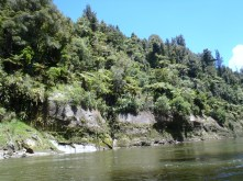 The beautiful scenery of the Wanganui River begins