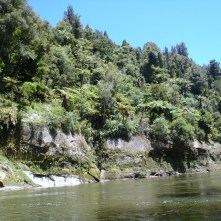 The beautiful scenery of the Wanganui River begins