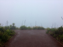 """Our """"Priceless View"""" from Cape Reinga"""