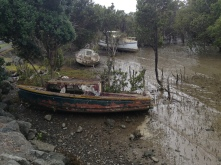 One of the cooler pictures we took, old fishing boats that were just abandoned.