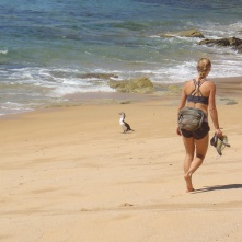 Awesome shot of Lindsay hiking one of the sandy beaches of the Able Tasman
