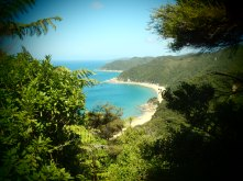 Looking down at the beaches of the Able Tasman Track