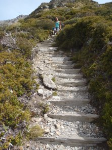 1,800 stairs and 2.5 miles. Seriously.