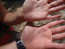 Proof! Those are our starting semi-official trail numbers!