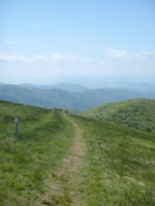 """""""Artistic Shot"""" on Max Patch Bald"""