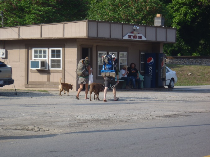"Lindsay, Hunter, George & Bear walking the ""AT"" in Hot Springs, NC"