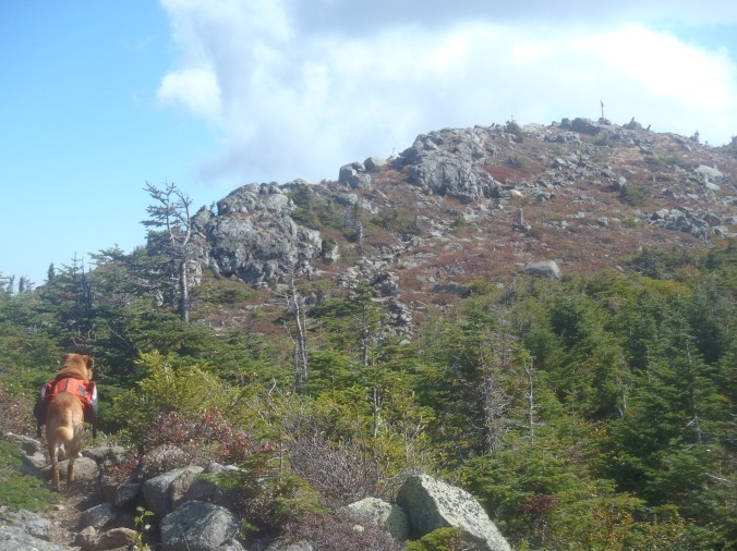 Climbing to the top of one of the Bigelow peaks on a beautiful day